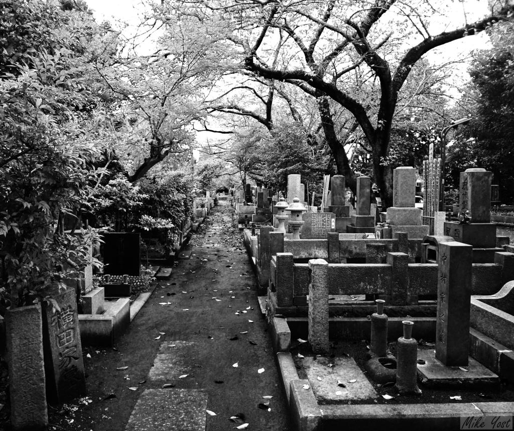Japan - cemetery 2