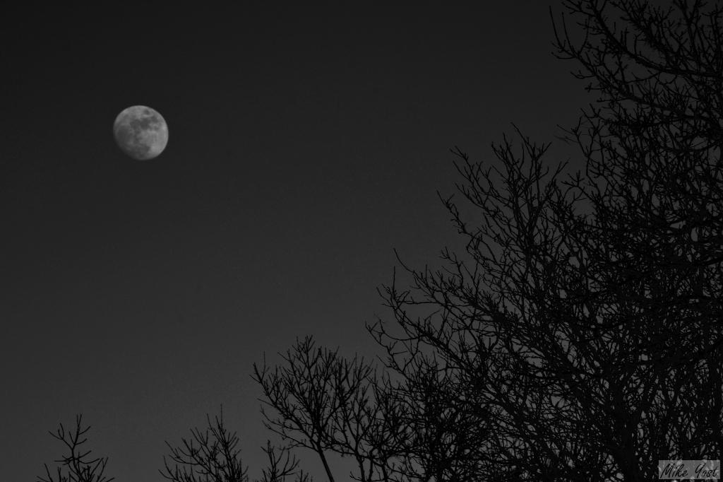 moon - death