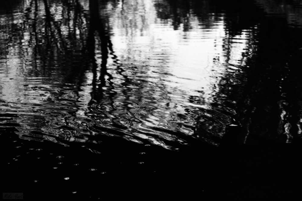 ripples-of-water