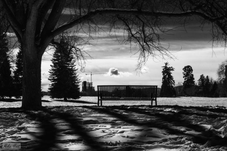 cold-contemplation